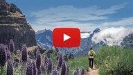 Video Thumbnail Ausflugstipps Madeira