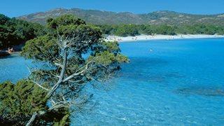 Grüne Natur und blaues Meer in idyllischen korsischen Badebucht