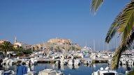 Die Altstadt von Calvi inklusive Hafen befindet sich in Laufnähe vom Feriendorf Zum Störrischen Esel